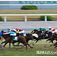 京阪杯13